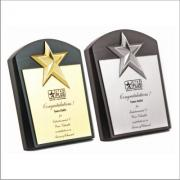 1366440068_Wooden_Star_Award-.jpg